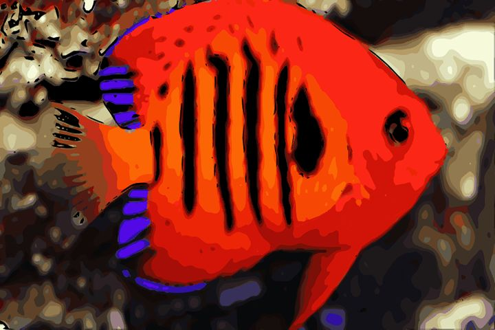 Fire Angelfish - Gypsea Art & Designs