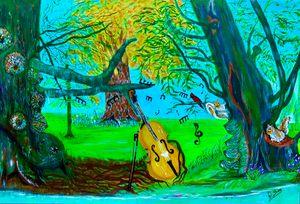 Cello in Massachusetts