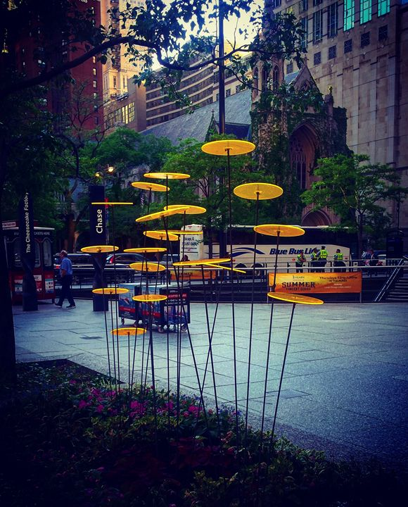Simple Art, Beautify the City - Amanda Hovseth