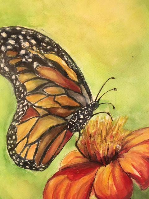 Monarch Butterfly - Winnifred Liang