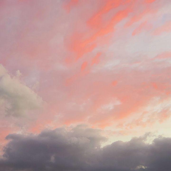 Pink Elephant - AcidKat