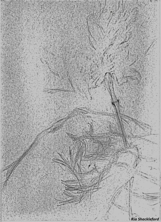 A Flower For You - Kia N. Shackleford