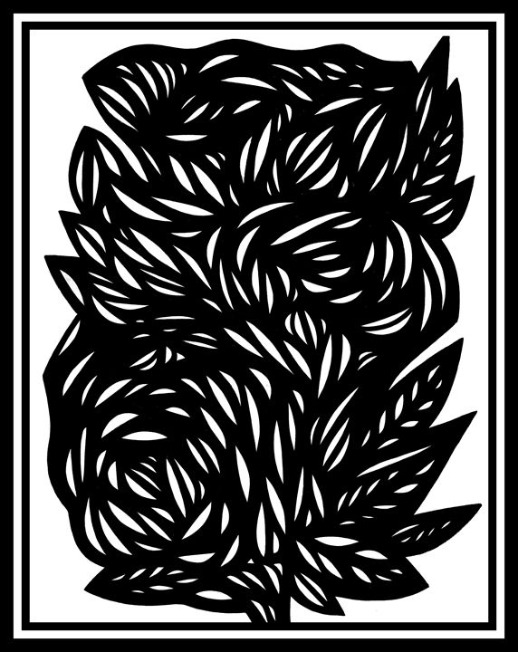 Scintilla Flowers Black and White - 631 Art