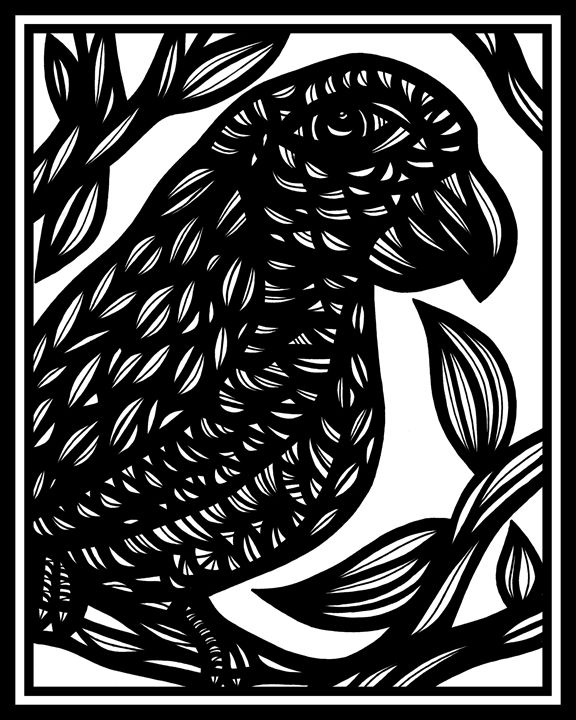 Arabesque Parrot Black and White - 631 Art