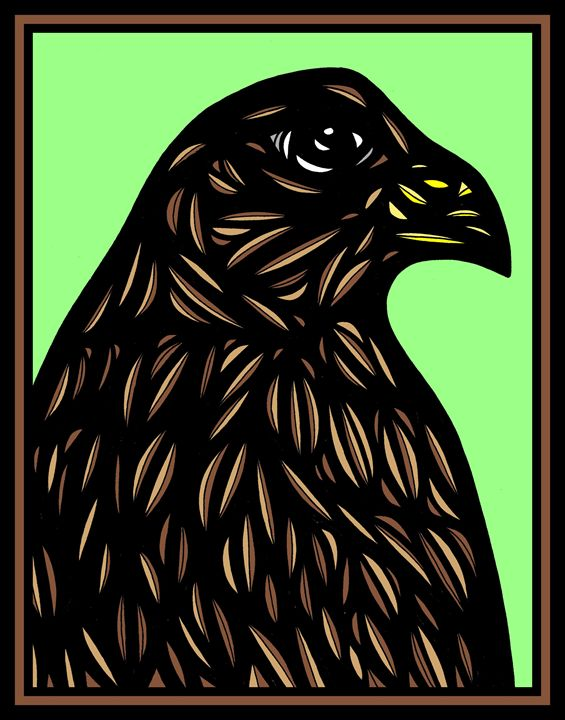 Susquehanna Eagle Hawk Brown Black R - 631 Art