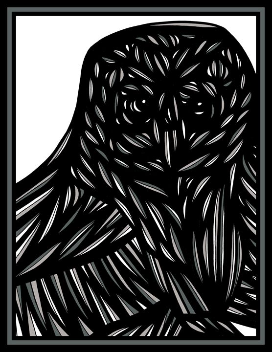 Harbinger Owl Grey Black White - 631 Art
