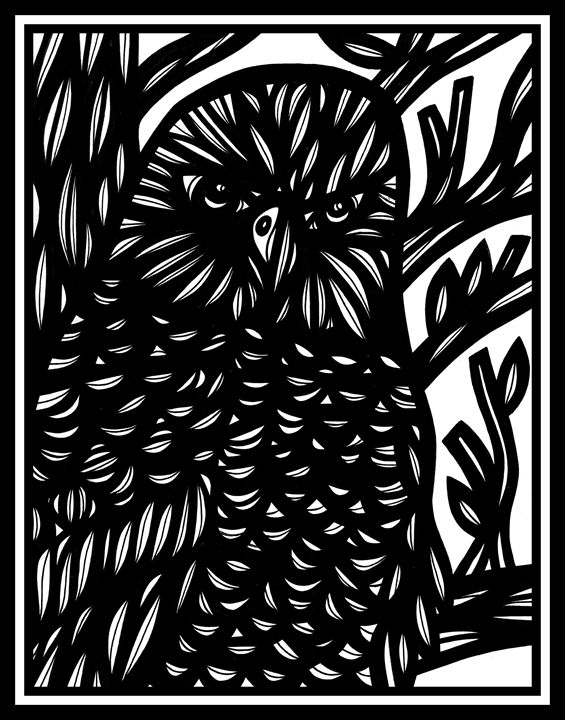 Acquiesce Eagle Hawk Black and White - 631 Art