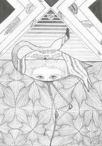 The flamingo - Sonia Mesquita
