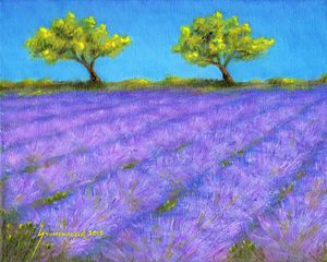 Lavender Field With Twin Oaks