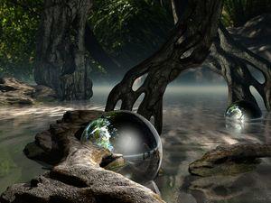 Rainforest Reflective
