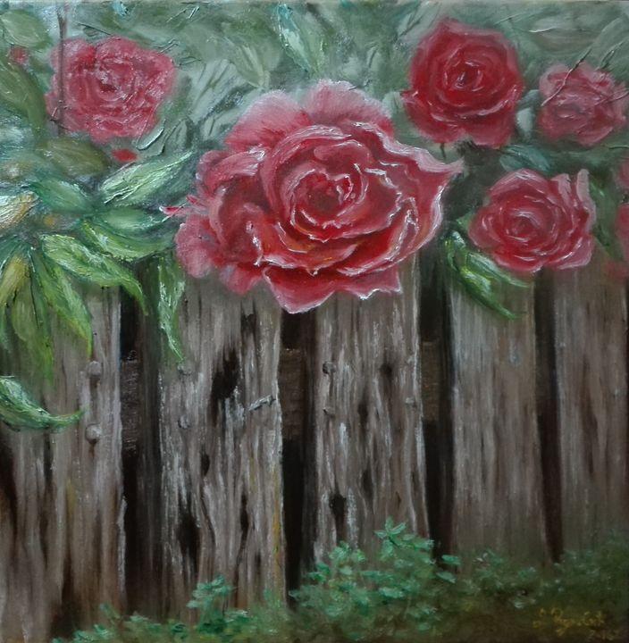 Roses - Darko