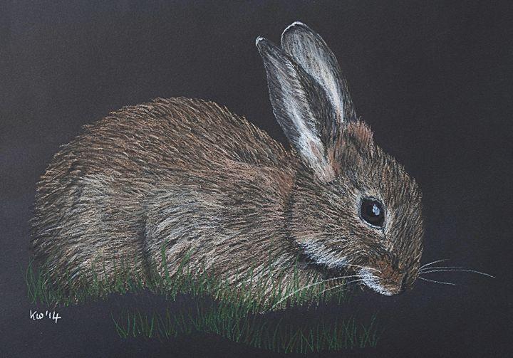 Rabbit - Kate Wilkey Art