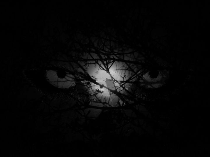 Wolfs Moon - art4gaia
