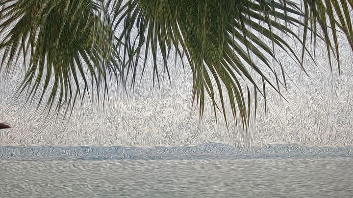Palm Beach - art4gaia