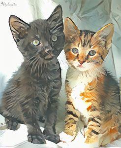 Mini's cats