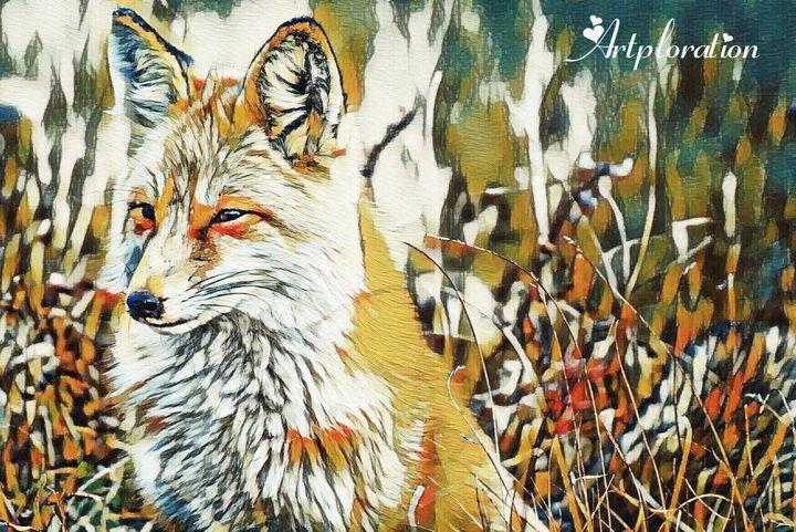 Arctic fox - Artploration