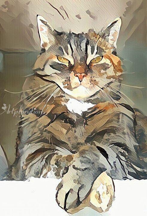 Cat on the Wall - Artploration