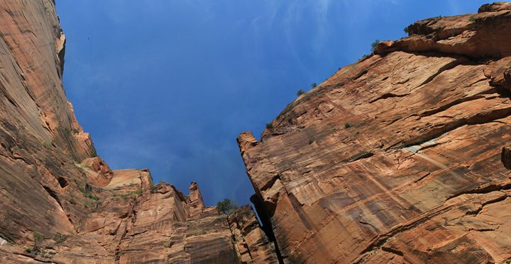 ZION, the place to just BE - Juan's corridor