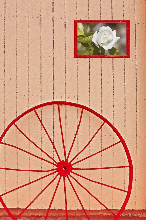 wheel and rose - Juan's corridor