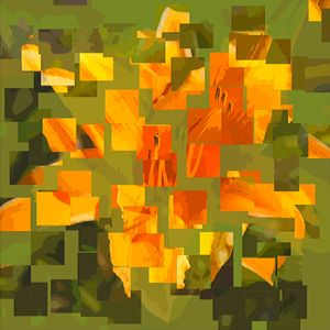 the soul of a yellow-orange lily