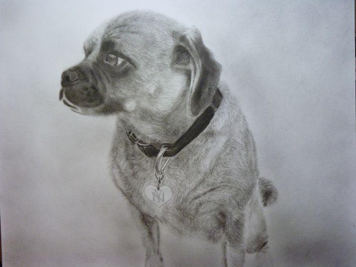 Pugle - cibuco art