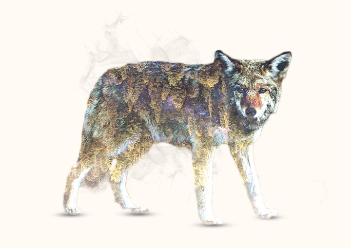 Wolf / Colored - Incendium Design