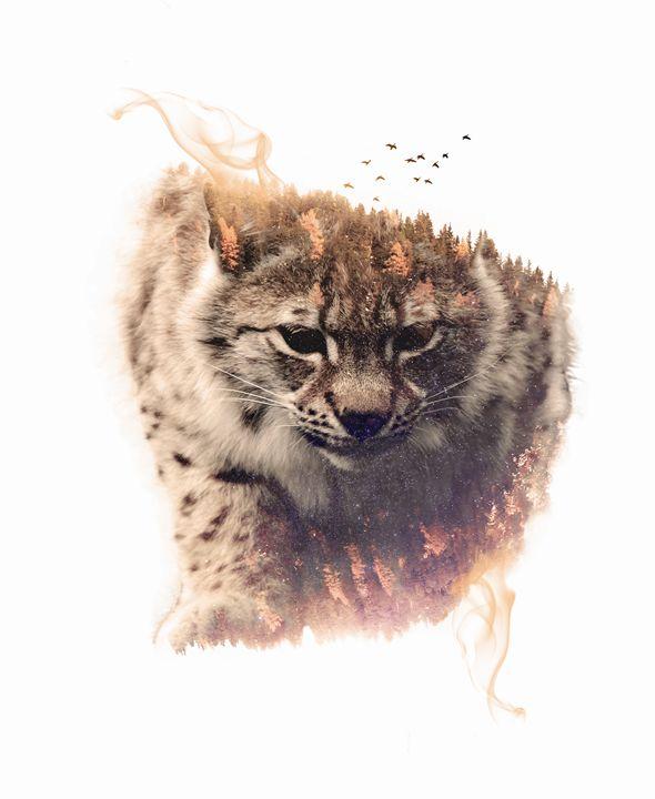 Lynx - Incendium Design