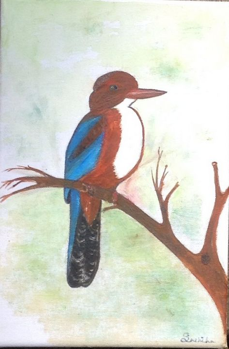 Wild Collection- Kingfisher - DefiKarts Gallery