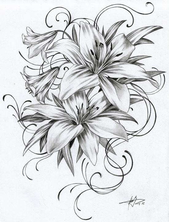 1502 Lilies Ginnungagap Tattoo Designs Drawings Illustration