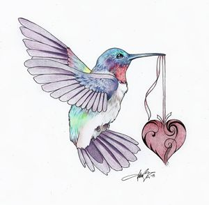 1504 - Hummingbird