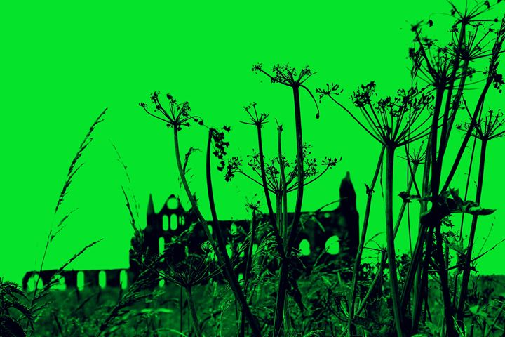 Whitby Abbey in Green - Travels with my Art