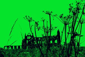 Whitby Abbey in Green