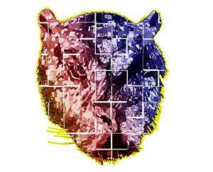 Tech-Tiger