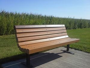 Bench by cornfield