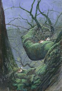 Moss Birds 2