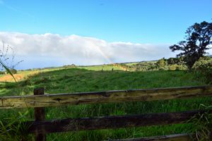 Rainbow in the country