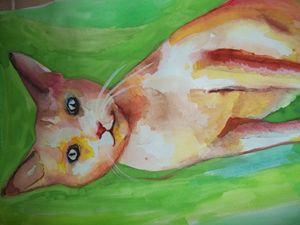 Basil Cat