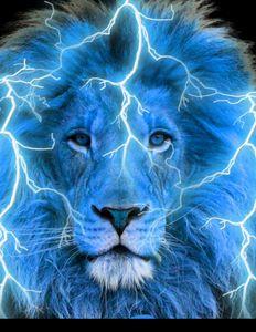 Yeshua Lion of Judah - Tripp Reynolds