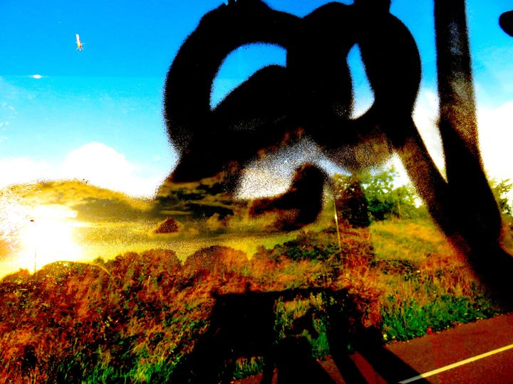 Landscape Perception - Francis