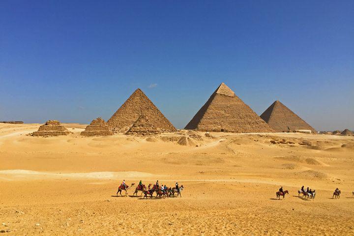 Egypt / Giza - Camels of Giza - Wanderlust