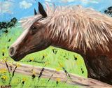 Original Acrylic Painting of HOrse