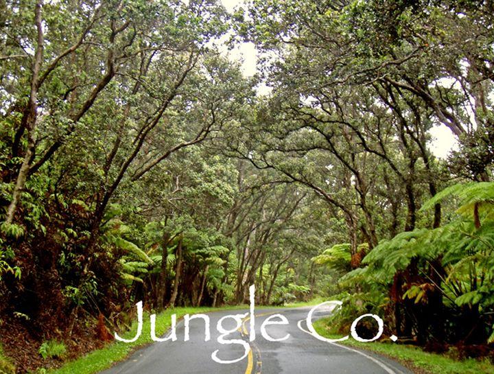 Jungle Oasis - Steezy art