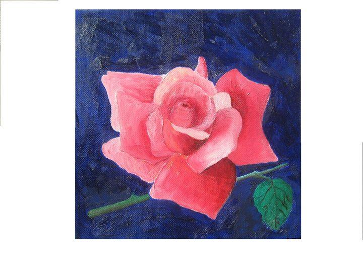 Rose from my garden - Rainbow Box