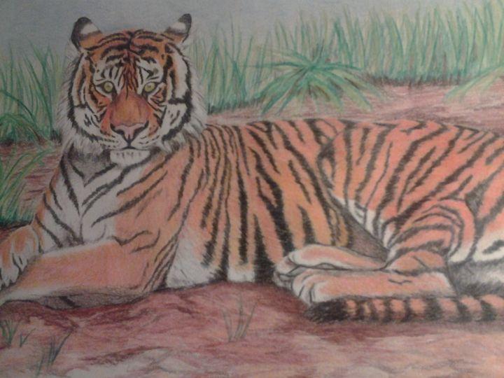 Resting Tiger - A.L. Exley