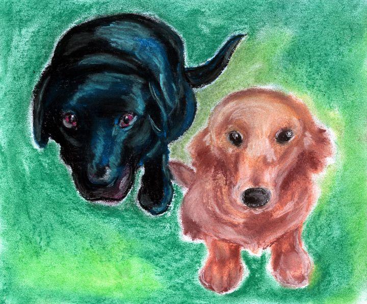 Puppy Eyes - Fairychamber