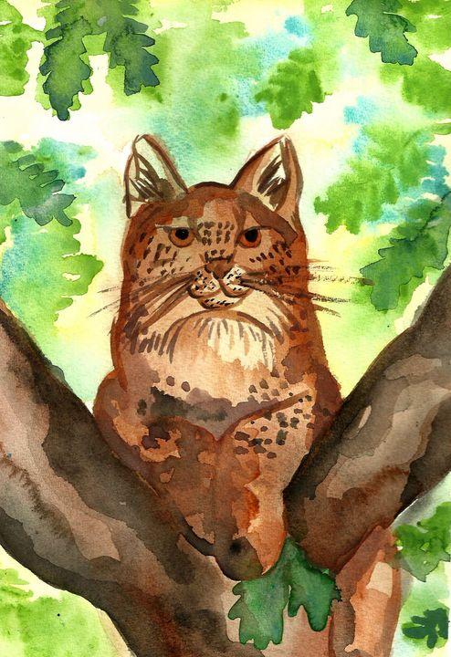 Lynx - Fairychamber