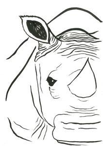 Rhino - Fairychamber