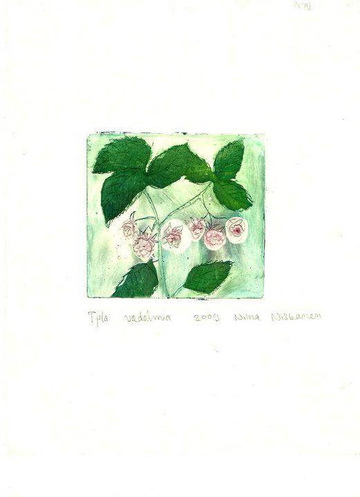 Raspberries - Fairychamber