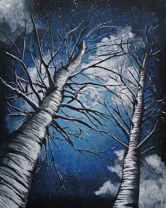 NIGHT SCAPE - Eric William.S
