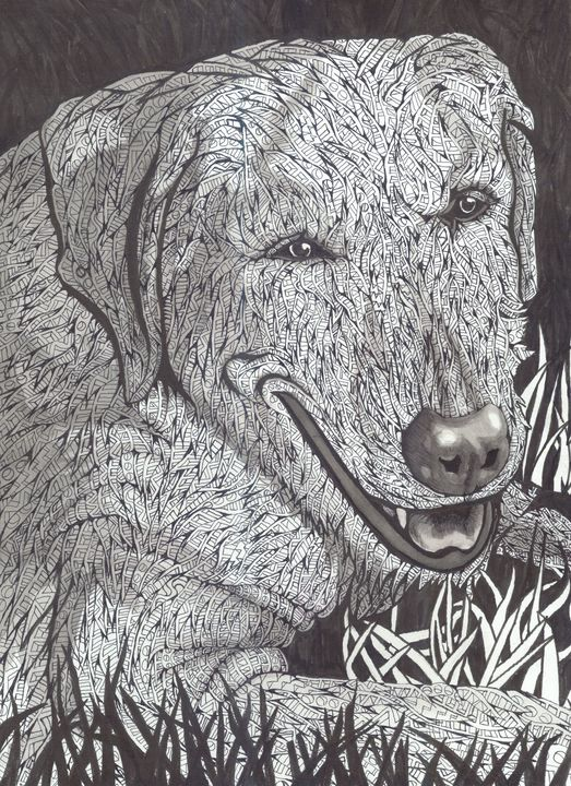 cheshire grin - Ben Roback's Art